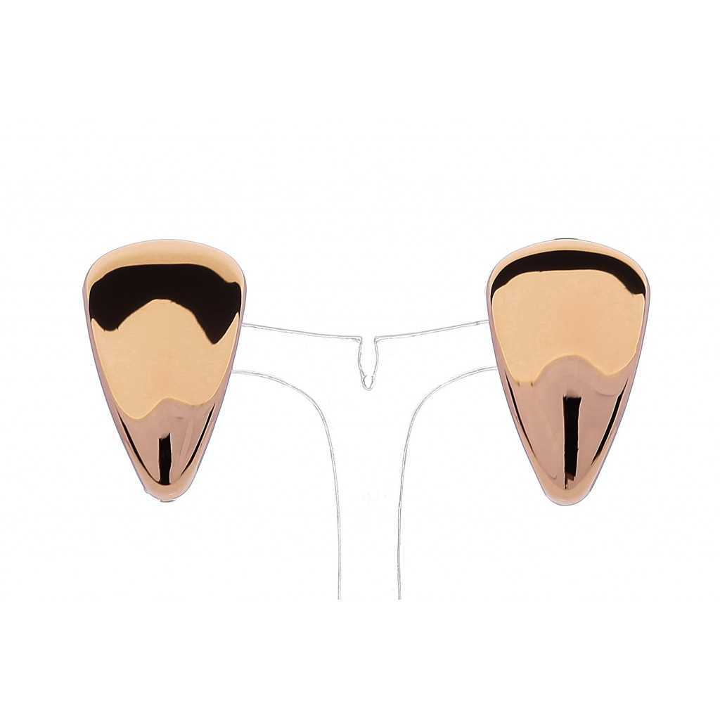Auksiniai auskarai 00189 - Auksiniai auskarai - Goldinga