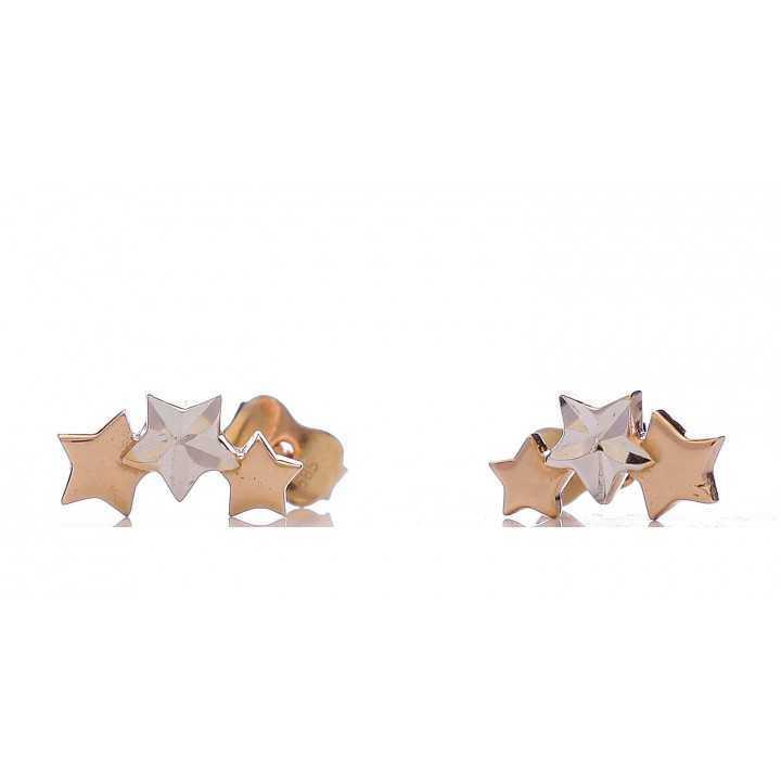 Auksiniai auskarai 006095000136 - Auksiniai auskarai - Goldinga